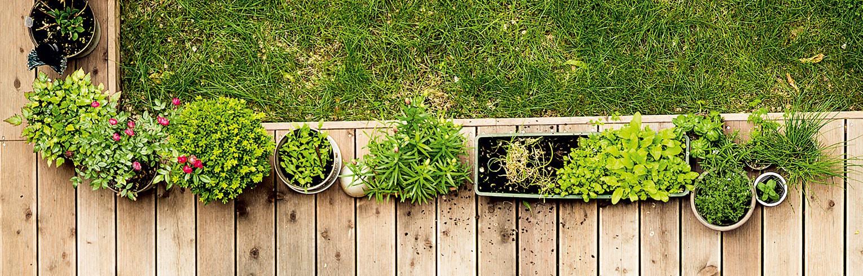 Environnement-Mobilier - Décoration - Cuisson-Fontaine